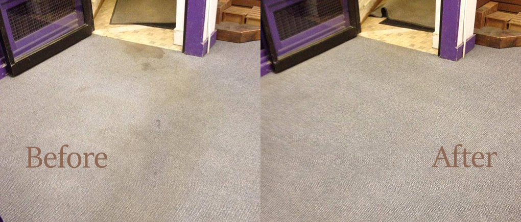 Carpet Comparison